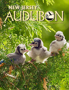 NJ Audubon 44-page mag